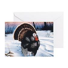 Wild Turkey Thanksgiving Greeting Card