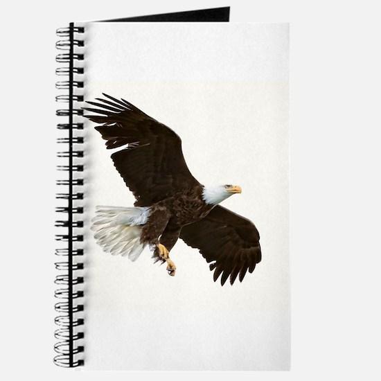 Amazing Bald Eagle Journal