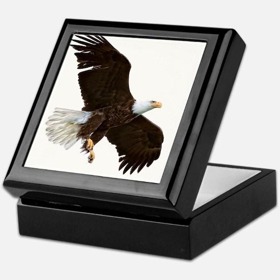 Amazing Bald Eagle Keepsake Box