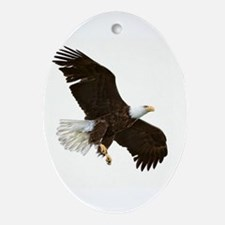 Amazing Bald Eagle Ornament (Oval)