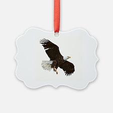 Amazing Bald Eagle Ornament