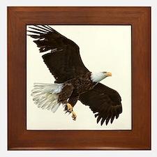 Amazing Bald Eagle Framed Tile
