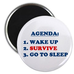 "AGENDA TO SURVIVE 2.25"" Magnet (100 pack)"