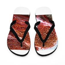 bbqd steaks Flip Flops