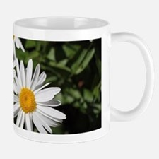 pretty pure white daisy flowers. Mugs