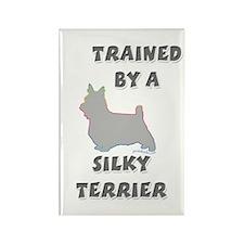 Silky Terrier Slvr Rectangle Magnet (100 pack)