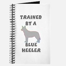 Blue Heeler Slvr Journal