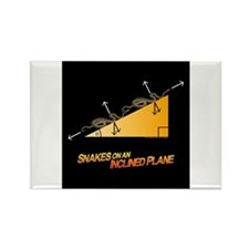 Snakes/Inclined Plane Rectangle Magnet