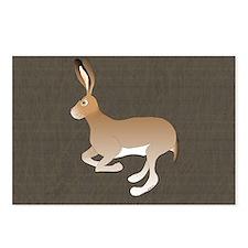 Jack Rabbit Postcards (package Of 8)