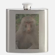 See You Soon, Baboon Flask