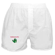 Danielosaurus Rex Boxer Shorts