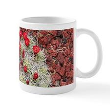 Red cactus in flower, Utah, USA Mugs