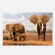 Family Of Elephants Postcards (Package of 8)