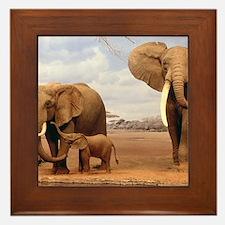 Family Of Elephants Framed Tile
