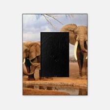 Family Of Elephants Picture Frame