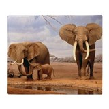 Elephant family Fleece Blankets