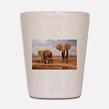 Family Of Elephants Shot Glass