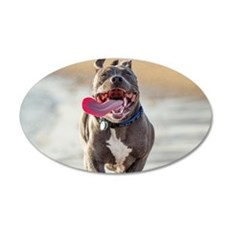 Pit bull Running With Tongue Sticking Out Wall Dec