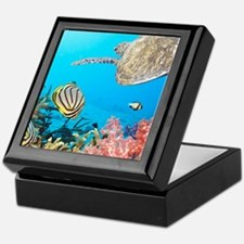 Turtle and Fishes Under Water Keepsake Box