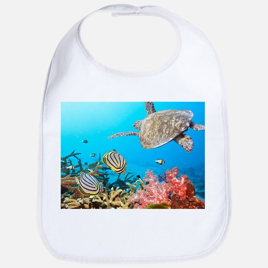 Turtle and Fishes Under Water Bib
