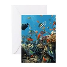 Fishes and Underwater Plants Greeting Cards