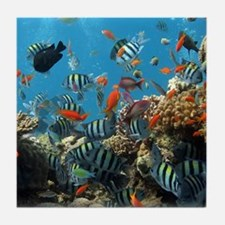 Fishes and Underwater Plants Tile Coaster