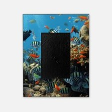 Fishes and Underwater Plants Picture Frame