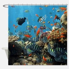Fishes and Underwater Plants Shower Curtain