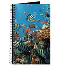 Fishes and Underwater Plants Journal