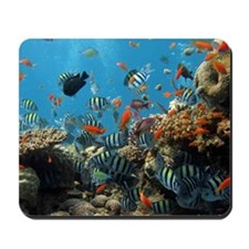 Fishes and Underwater Plants Mousepad