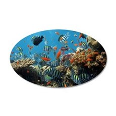Fishes and Underwater Plants Wall Decal