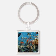 Fishes and Underwater Plants Keychains
