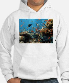 Fishes and Underwater Plants Hoodie