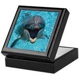 Smiling dolphin Square Keepsake Boxes