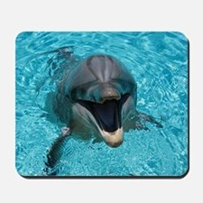 Smiling Dolphin Mousepad