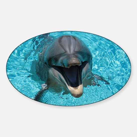 Smiling Dolphin Decal