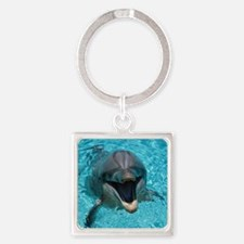 Smiling Dolphin Keychains