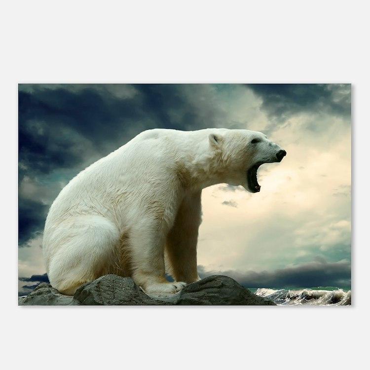 Polar Bear Roaring Postcards (Package of 8)