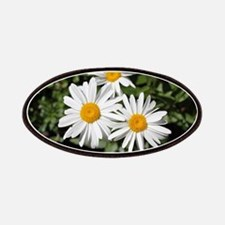 pretty pure white daisy flowers. Patch