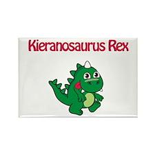 Kieranosaurus Rex Rectangle Magnet (10 pack)