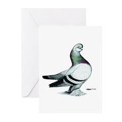 Berliner Shortface Greeting Cards (Pk of 20)