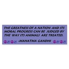 Gandhi Greatness of a Nation Bumper Bumper Sticker