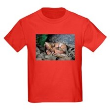 Copperhead T-Shirt