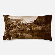 native american Pillow Case