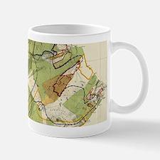 Vintage Map of Hawaii Island (1906) Mugs