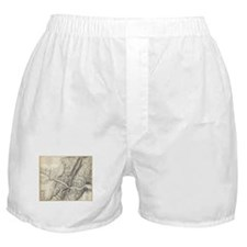 Vintage Map of Harpers Ferry (1863) Boxer Shorts