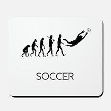 Soccer Goalie Evolution Mousepad