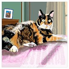 Cali Q Kitten Poster