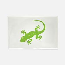Gecko Lizard Magnets