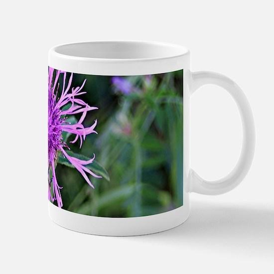 Purple pink flower and bee Mugs